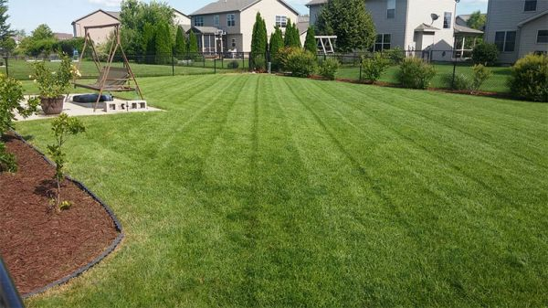 Lawn Maintenance Services in Bloomington IL