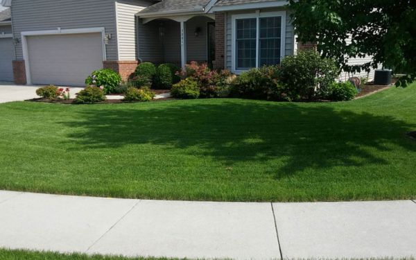 Local Lawn Care in Bloomington IL