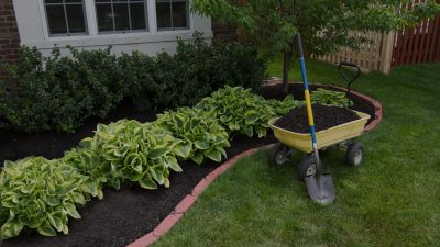 professional landscaping services in Bloomington IL